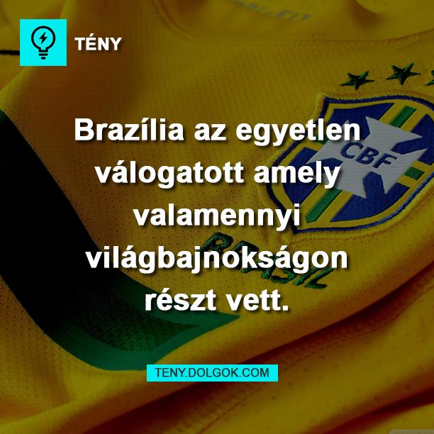 Brazília az egyetlen válogatott amely valamennyi világbajnokságon részt vett